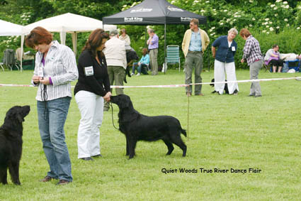 Flair Clubmatch 2010 Talloch Dawn